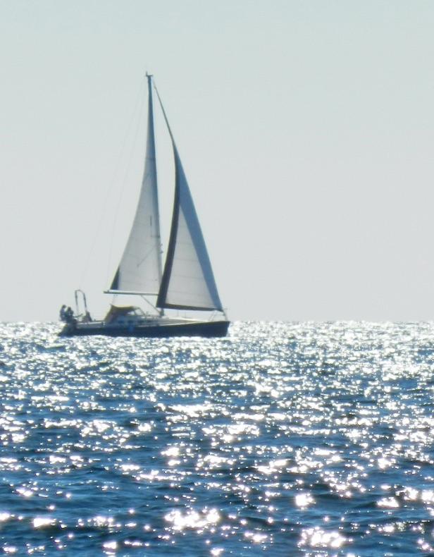 ヨット画像